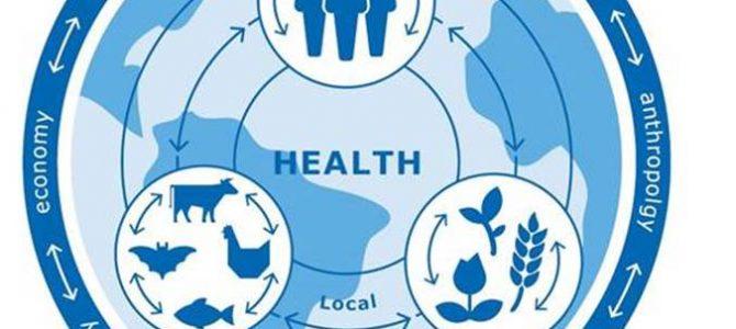 """Kas yra """"viena sveikata"""" ir """"sveikata visose politikose""""?"""