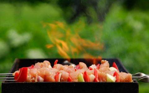 Kepsnių lauke sezonui įsibėgėjus labai svarbu nepamiršti pagrindinių maisto pasirinkimo ir jo ruošimo taisyklių